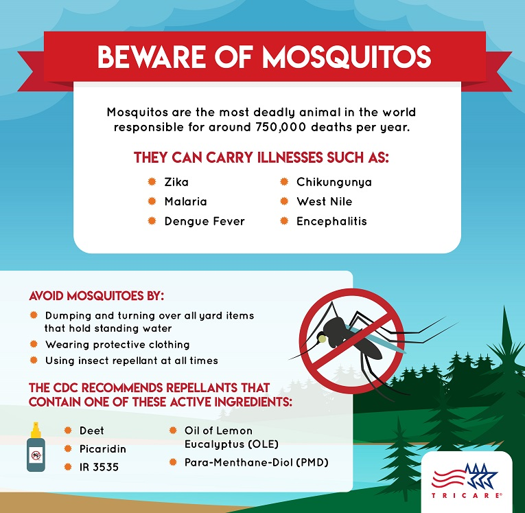 This infographic provides information on ways to protect yourself from harmful mosquito bites.